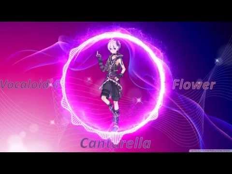 Cantarella - V4 Flower 【Vocaloid Cover】