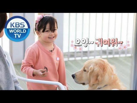 Cutest Human vs. Cutest Dog [The Return of Superman Teaser/ENG]