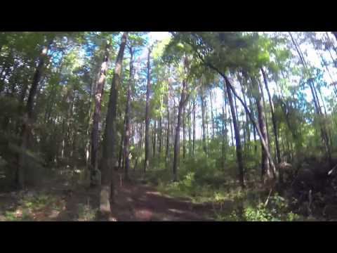 Run With Me: Cross Country Stampede 2015
