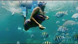 Snorkeling at Norman Island Caves, British Virgin Islands