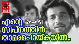 Ente Swapnathin - Achaani (1973) | K.J Yesudas | P Bhaskaran | G Devarajan | Film Songs