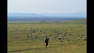 尋找蒙古大漢的故事 內蒙古呼倫貝爾之旅 Traveling in Inner Mongolia Hulunbuir