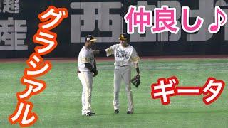 【何語で会話してるの!?】ホークス 柳田悠岐とグラシアルの笑顔溢れる会話