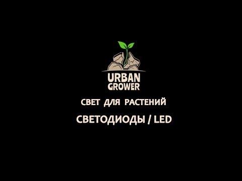 УРБАН ГРОВЕР УРОК 12 - СВЕТ ДЛЯ РАСТЕНИЙ - СВЕТОДИОДЫ   LED