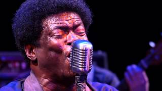 Charles Bradley and his Extraordinaires - Crying in the Chapel (Live on KEXP)