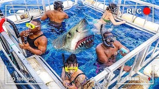 LAST TO LEAVE SHARK CAGE WINS $10,000