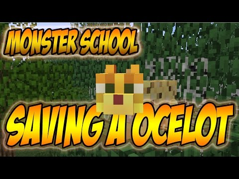 Monster School - Saving an Ocelot [MineCraft Animation]