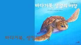 유아추천도서] 바다거북, 생명의 여행 ★★★