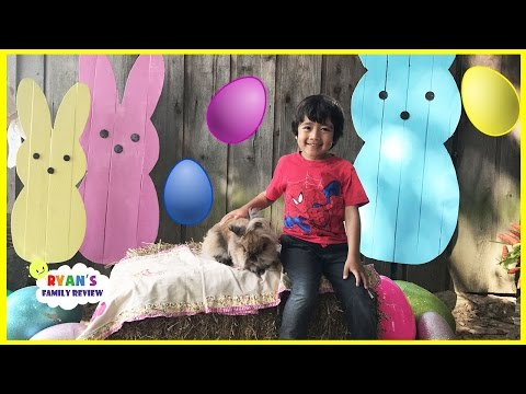Easter Egg hunt for kids at Farm with Ryan's family review