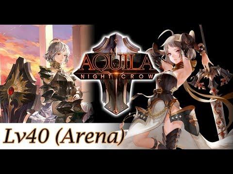 Seven Knights Arena - Aquila Lv40 in Arena