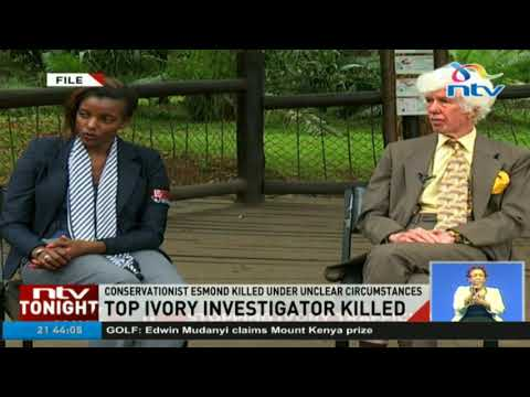 Top ivory investigator killed