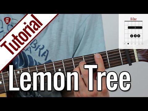 Fools Garden - Lemon Tree   Gitarren Tutorial Deutsch