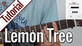 Fools Garden - Lemon Tree | Gitarren Tutorial Deutsch
