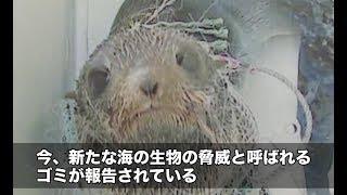 """【富山県】新たな海の脅威""""マイクロプラスチック""""   ソーシャルイノベーションニュース"""