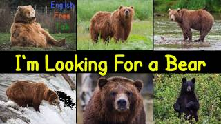 I'm Looking For a Bear