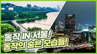 동작 IN 서울! 동작의 숨은 모습들이 궁금하다면? […