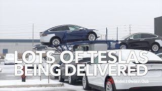 Lots of Teslas being delivered!! | Model 3 Owners Club
