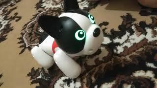 Интерактивная собака робот по кличке Duke