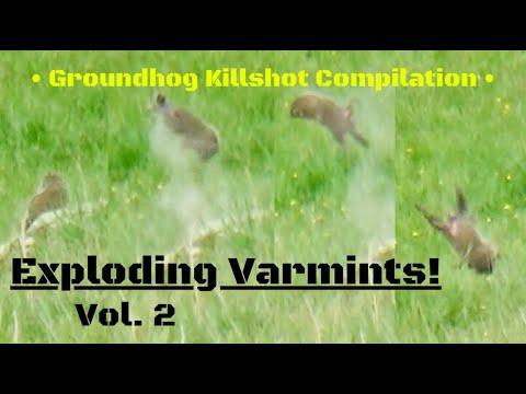 Download Groundhog Killshot Compilation...Exploding Varmints Vol. 2!!!
