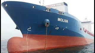 Container ship MOLIVA and Pleasure boats in Bosphorus Strait to sea