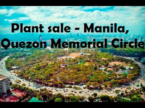 Plant sale - Manila, Quezon Memorial Circle