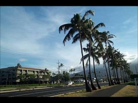 Hawaiian Soul by The Peter Moon Band