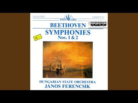 Symphony No. 2 in D Major Op. 36: III. Scherzo. Allegro