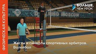 видео Все о волейболе