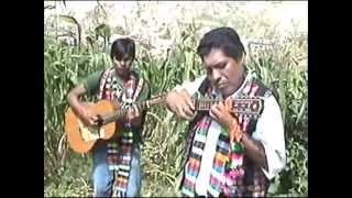 SELECCION de WAYÑITOS ( Charango ) Duo Jiramaykus