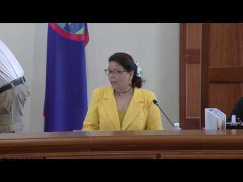34th Guam Legislature Morning Session Part 1 - March 7., 2017