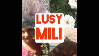 В лес по грибы.Природа.Небо.