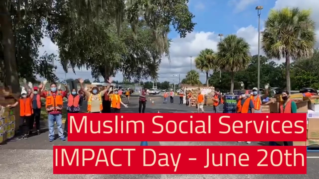 IMPACT Day June 20th
