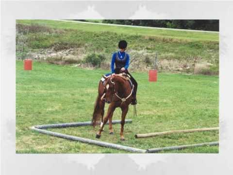 4-H Horsemanship Skills - YouTube
