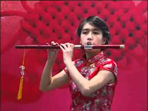 Amazing chinese musical instruments Solo