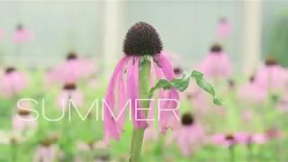 """最先端の""""植物の魔術師""""のドキュメンタリー『FIVE SEASONSガーデン・オブ・ピート・アウドルフ』予告"""