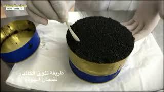 انتاج الكافيار بالسعودية - طعام الملوك   سناب الاحساء