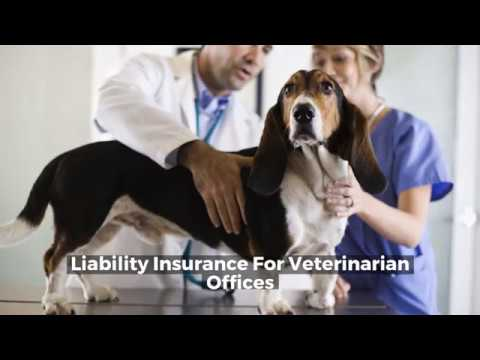 Liability Insurance For Veterinarian Offices