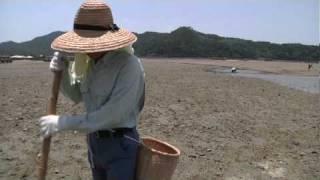 http://www.chie-project.jp 日本列島は自然環境と上手に永くつきあって...