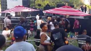 Lincoln Park House Music Festival 2015