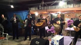 Mariachi Fiesta En Jalisco - Hermoso Cariño
