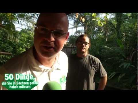 RADIO PSR - 50 Dinge - Tag 20 - Zoo Leipzig