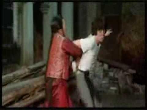 Jackie Chan vs Hwang Jang Lee - snake vs eagle