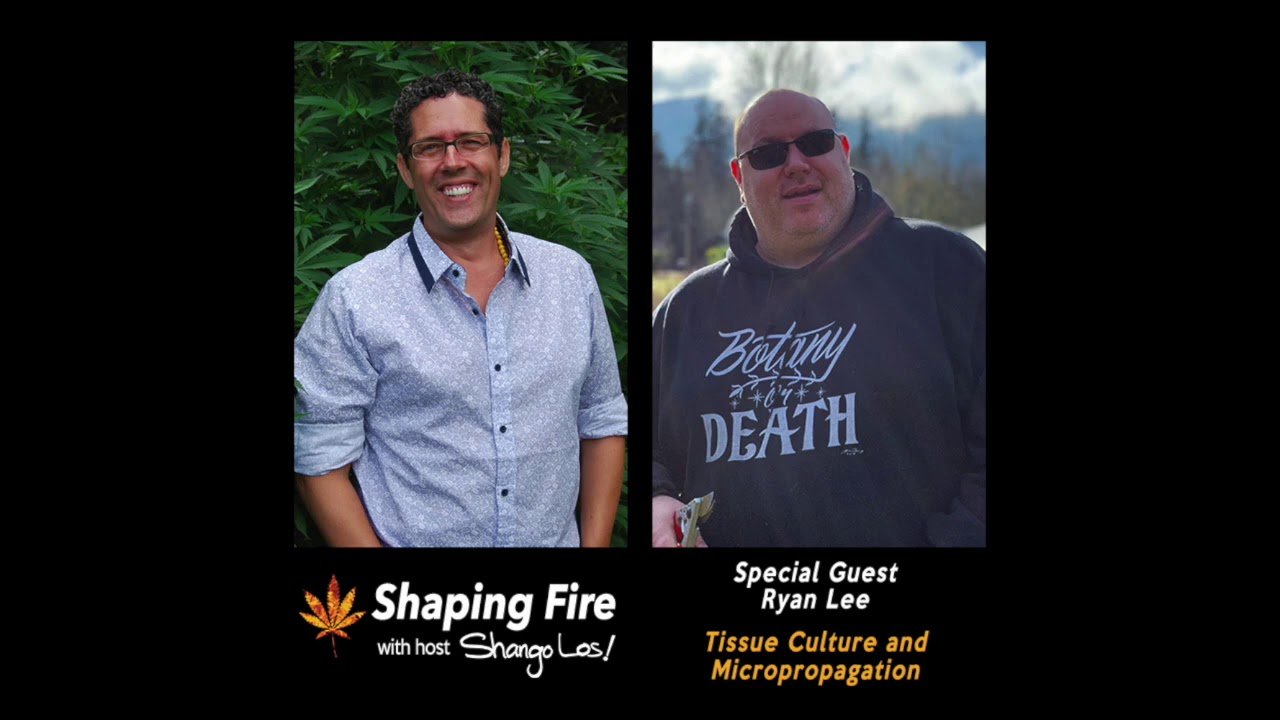 Download Shaping Fire Ep. 74 - Tissue Culture and Micropropagation with guest Ryan Lee
