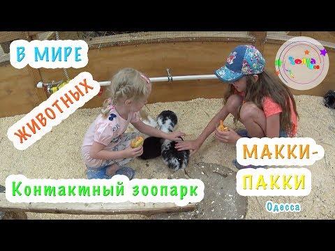 КОНТАКТНЫЙ ЗООПАРК МАККИ-ПАККИ / Супер место для детей и родителей / куда пойти с детьми / Одесса
