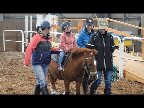 ホースセラピーじわり浸透 心身の機能回復、馬とともに