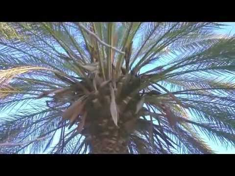 ATHENY - THISSIO, MONASTIRAKI / video