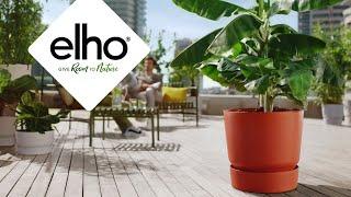 elho: La beauté des déchets