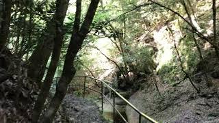 室生ダム近くの 龍鎮神社