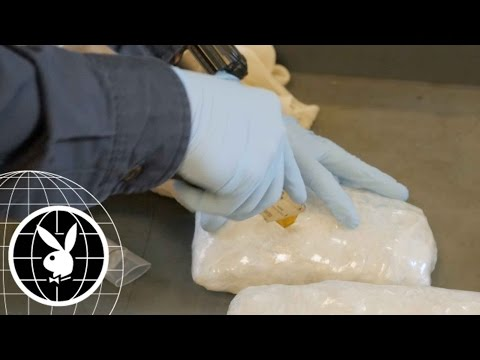 Drug Trafficking at the Border: A High-Stakes Numbers Game