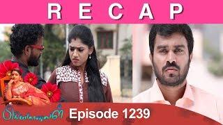 RECAP : Priyamanaval Episode 1239, 11/02/19